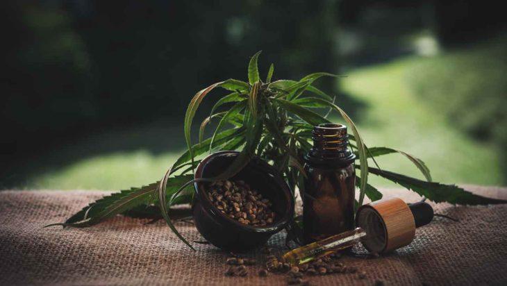huile plante